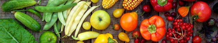 Vegan & Vegetarisch