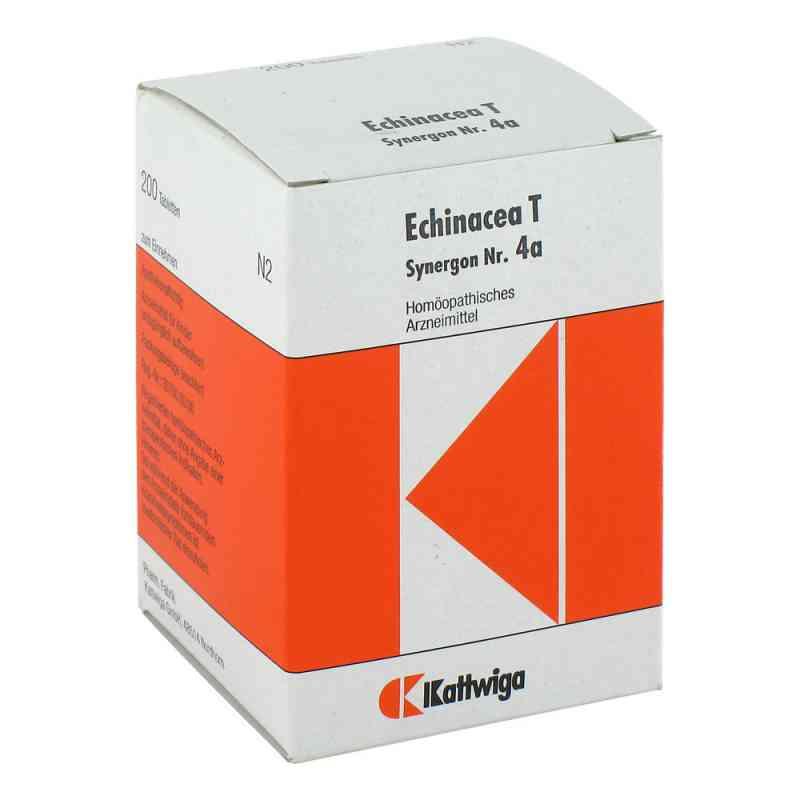 Synergon 4 a Echinacea T Tabletten  bei versandapo.de bestellen