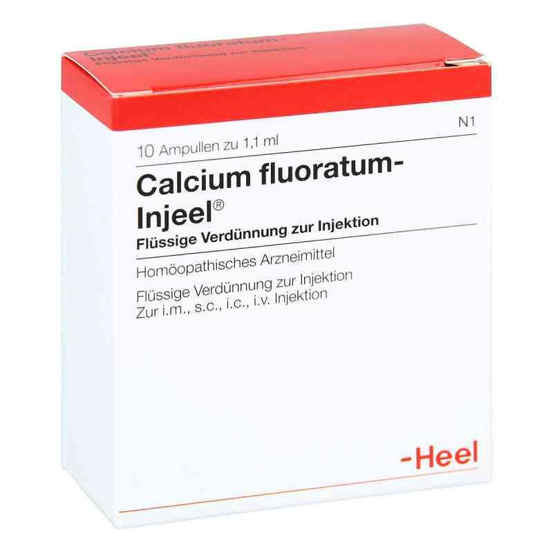 Calcium Fluoratum Injeel Ampullen  bei versandapo.de bestellen