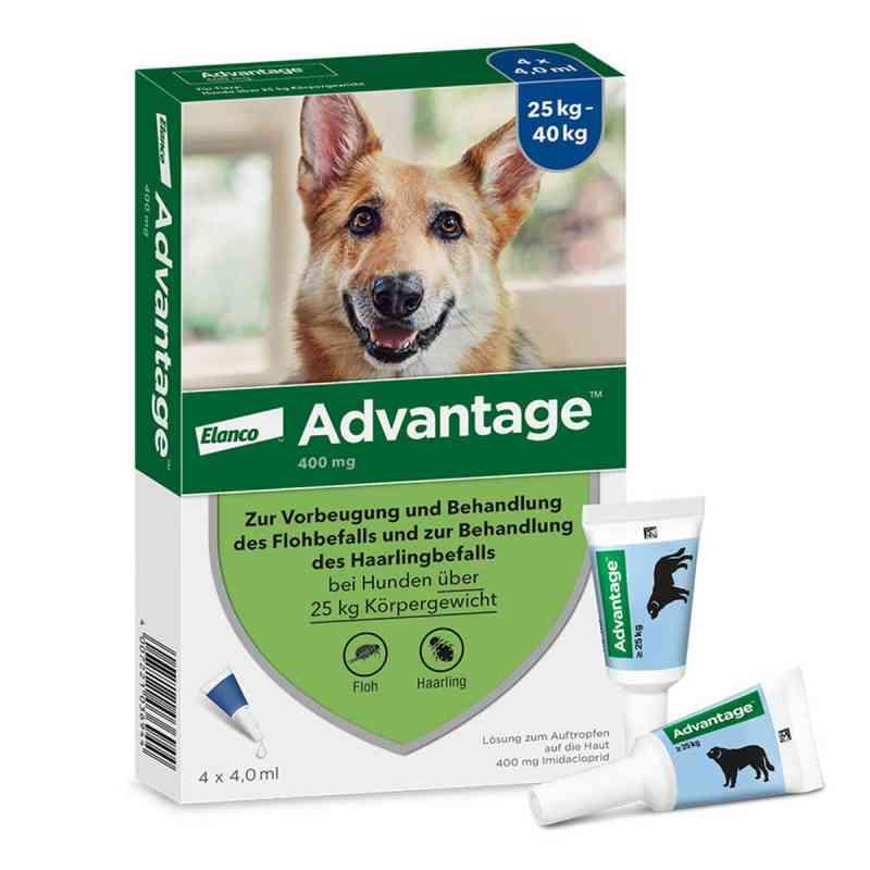Advantage 400 für Hunde Lösung  bei versandapo.de bestellen