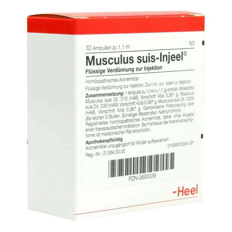 Musculus suis Injeel Ampullen  bei versandapo.de bestellen