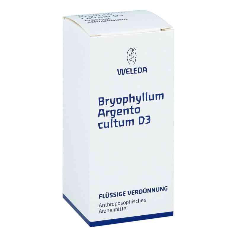Bryophyllum Argento Cultum Dilution D 3  bei versandapo.de bestellen
