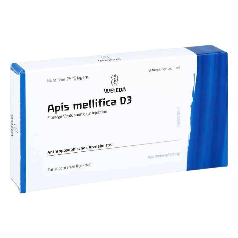Apis Mellifica D 3 Ampullen  bei versandapo.de bestellen