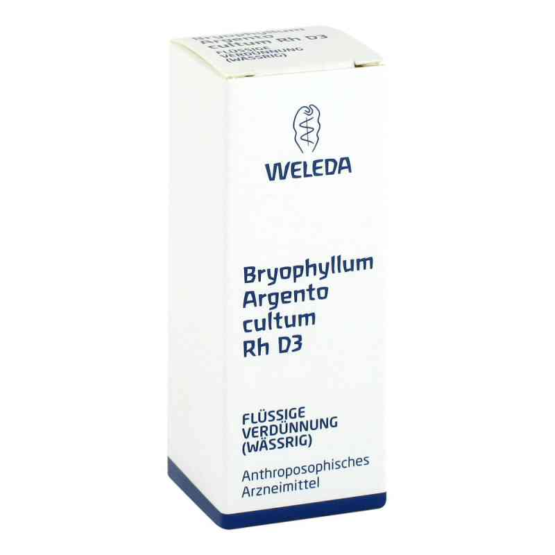 Bryophyllum Argento Cultum Rh D 3 Dilution  bei versandapo.de bestellen