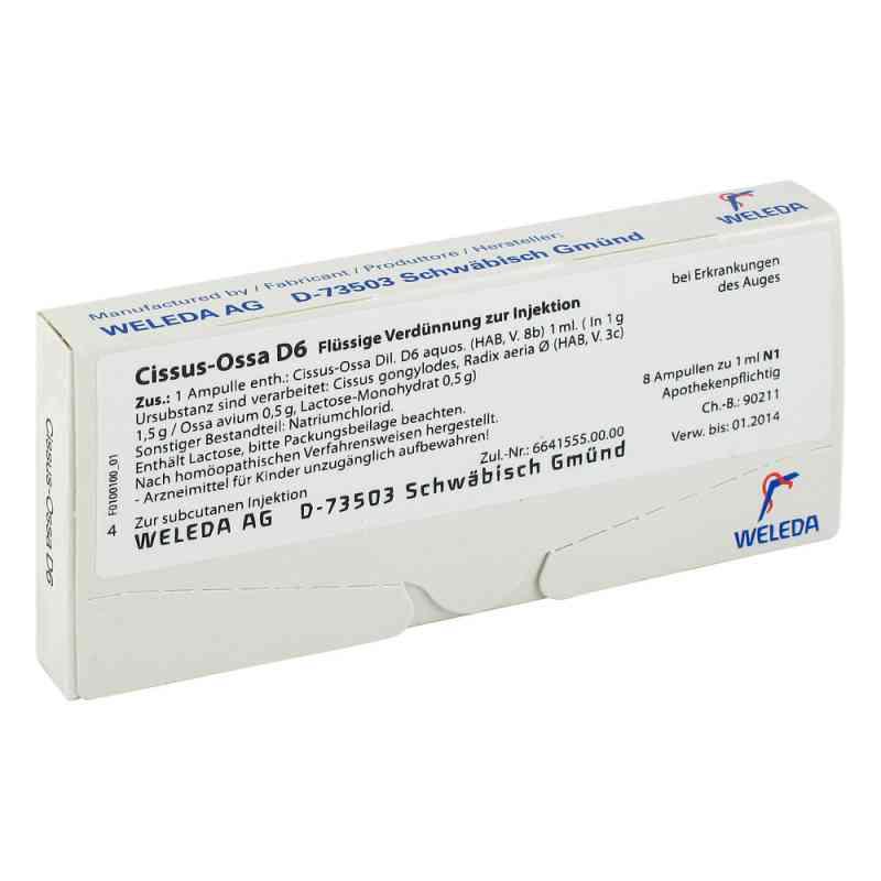 Cissus-ossa D 6 Ampullen  bei versandapo.de bestellen