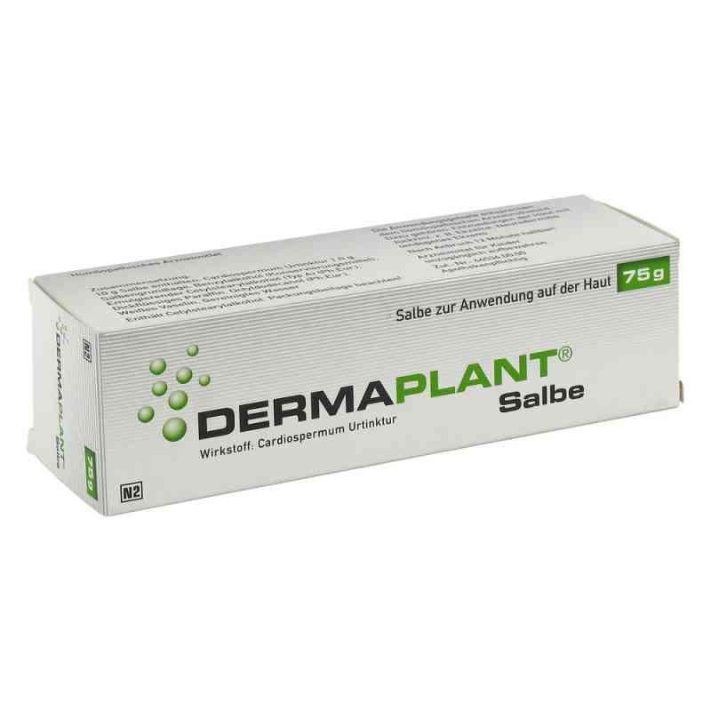 Dermaplant Salbe  bei versandapo.de bestellen