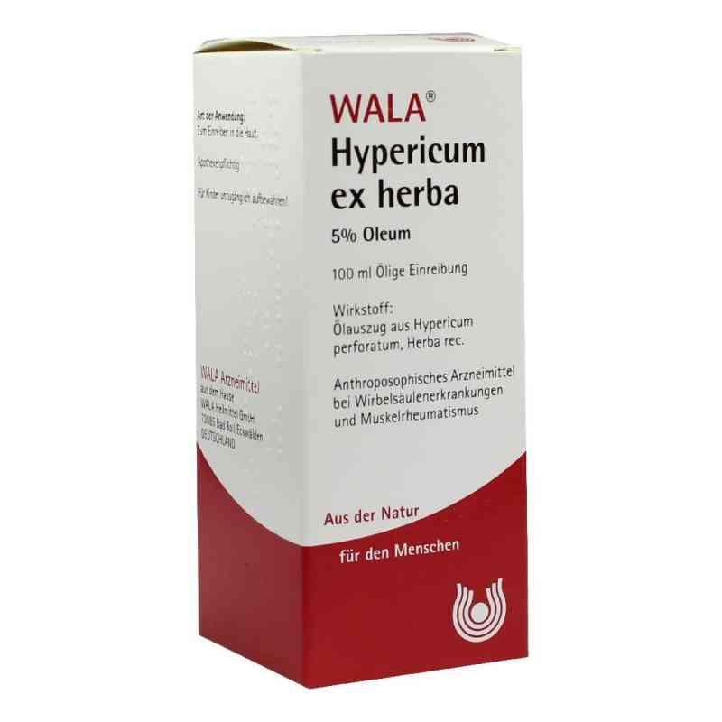 Hypericum Ex Herba 5% Oleum  bei versandapo.de bestellen