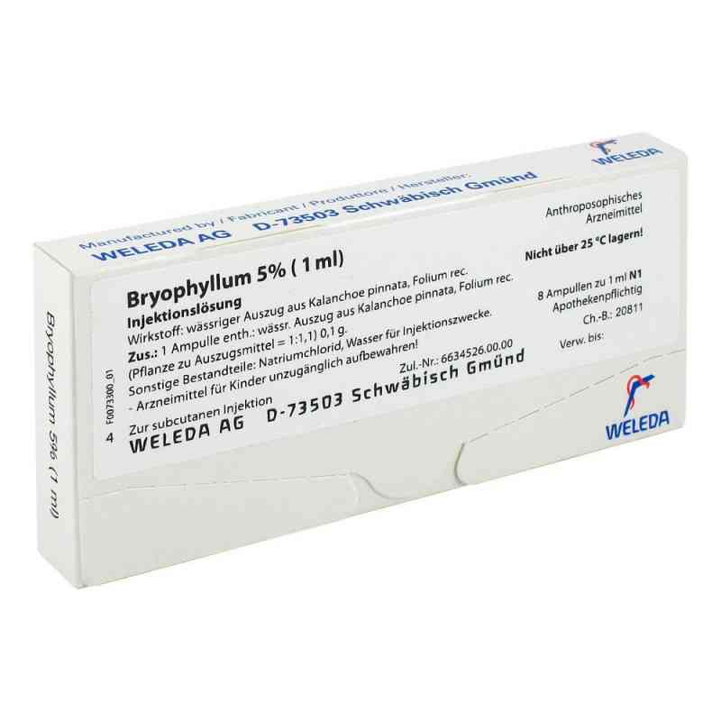 Bryophyllum 5% 1 ml Injektionslösung  bei versandapo.de bestellen