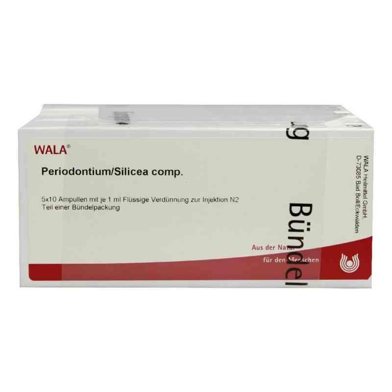 Periodontium/ Silicea Comp. Ampullen  bei versandapo.de bestellen