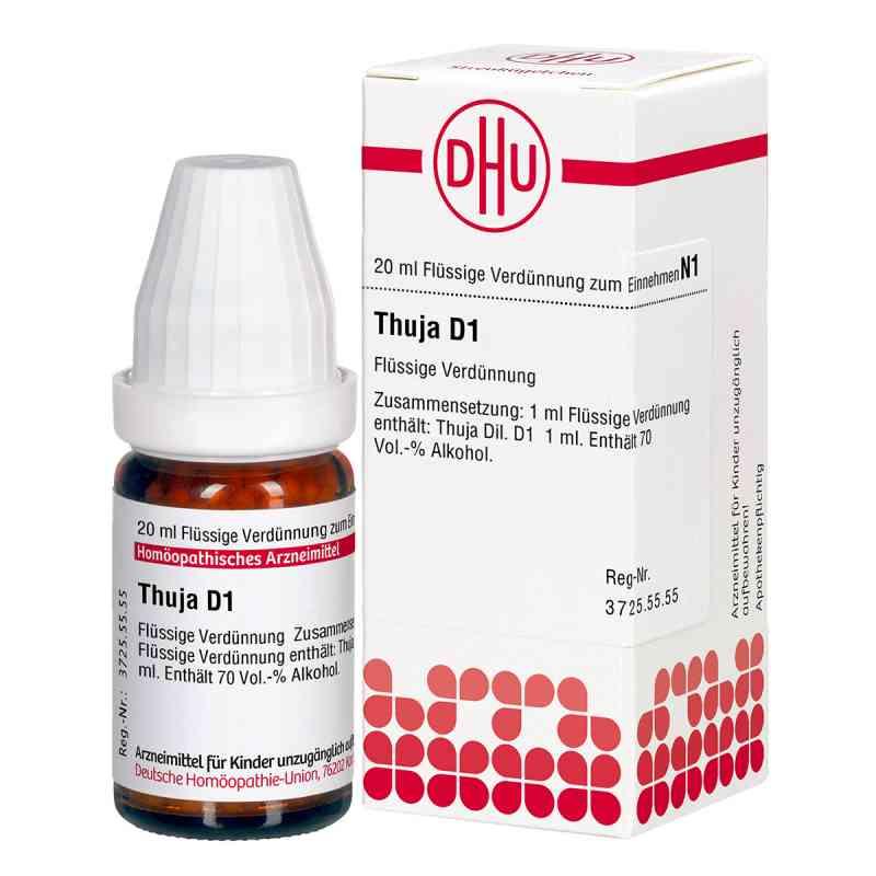 Thuja D 1 Dilution  bei versandapo.de bestellen