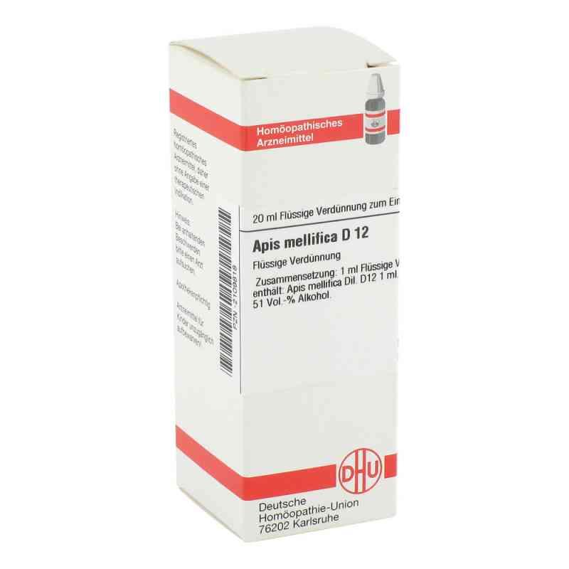 Apis Mellifica D 12 Dilution  bei versandapo.de bestellen