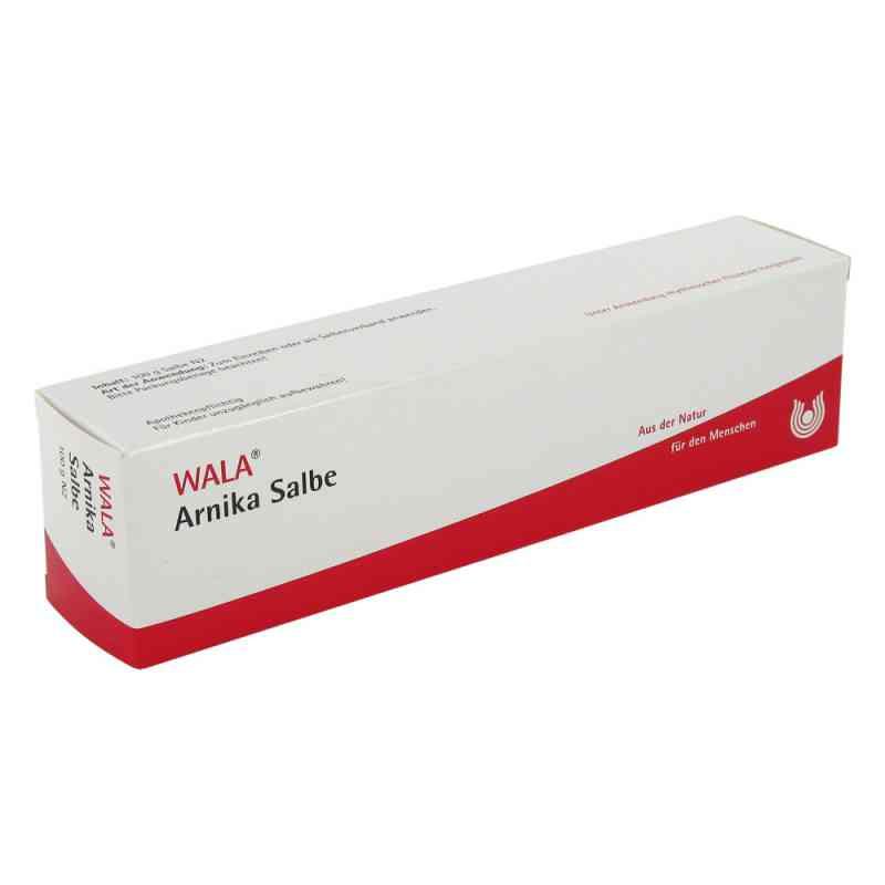 Arnika Salbe  bei versandapo.de bestellen