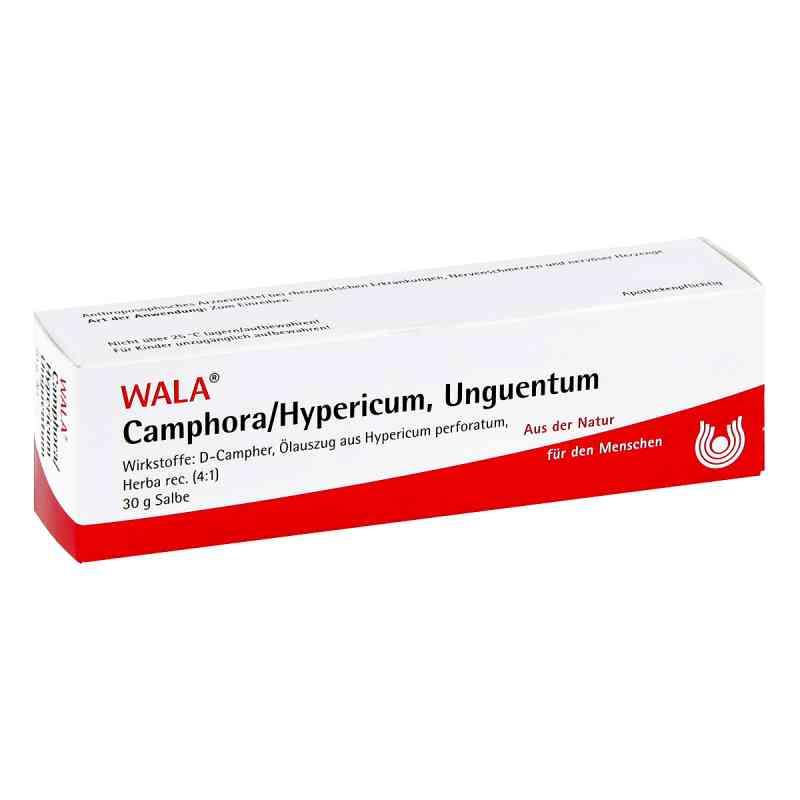 Camphora/hypericum Salbe  bei versandapo.de bestellen