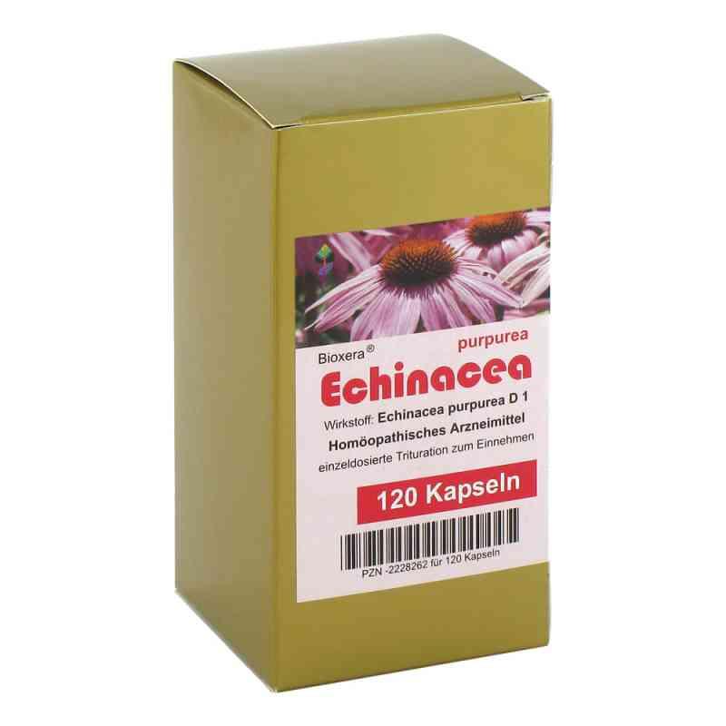 Echinacea Kapseln  bei versandapo.de bestellen