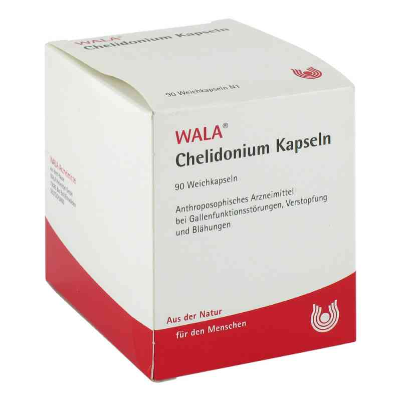 Chelidonium Kapseln  bei versandapo.de bestellen