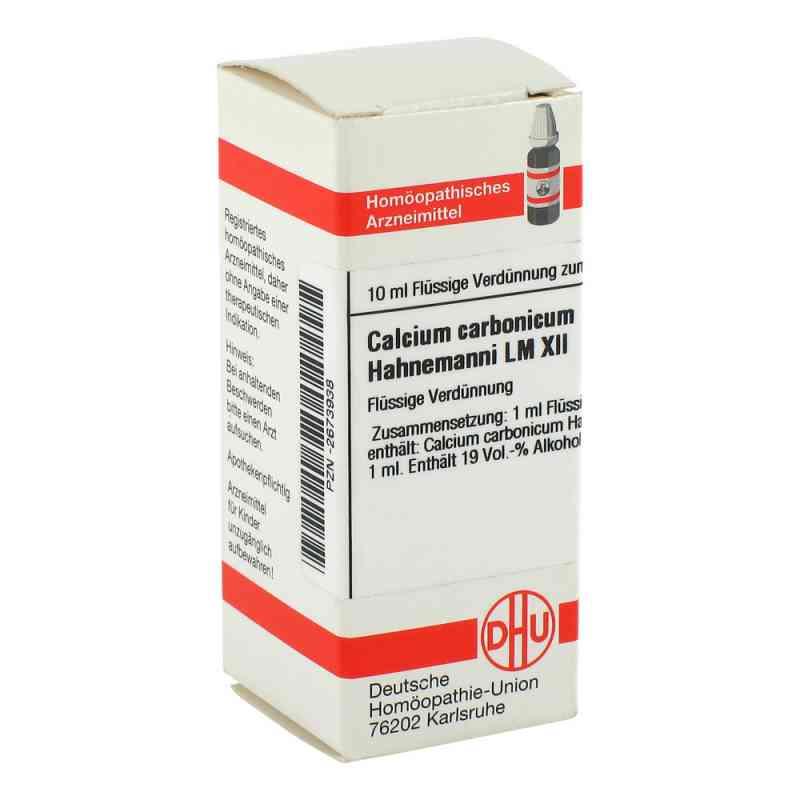 Lm Calcium Carb. Xii Hahnemanni  bei versandapo.de bestellen