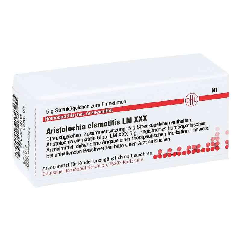 Lm Aristolochia Clem. Xxx Globuli  bei versandapo.de bestellen