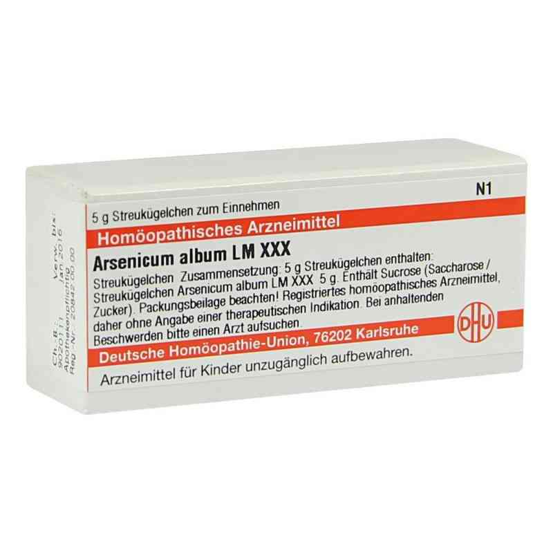 Lm Arsenicum Album Xxx Globuli  bei versandapo.de bestellen