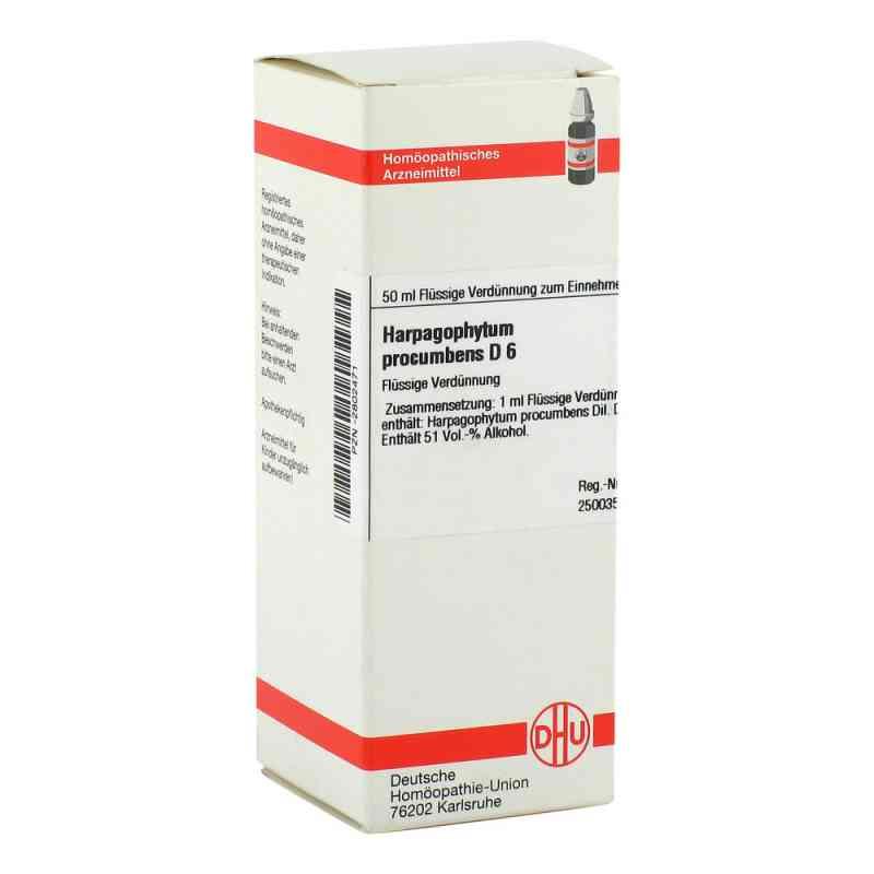 Harpagophytum Proc. D 6 Dilution  bei versandapo.de bestellen