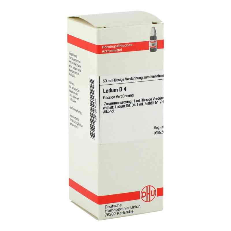 Ledum D 4 Dilution  bei versandapo.de bestellen