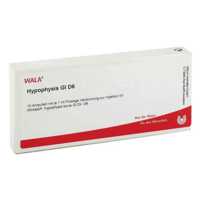 Hypophysis Gl D 6 Ampullen  bei versandapo.de bestellen
