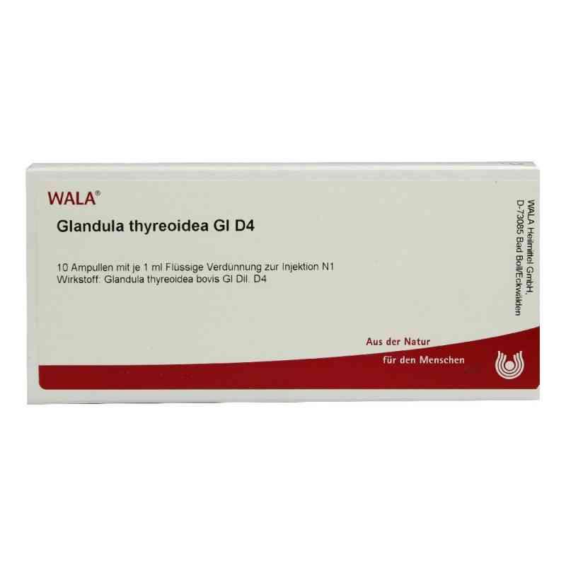 Glandula Thyreoidea Gl D 4 Ampullen  bei versandapo.de bestellen