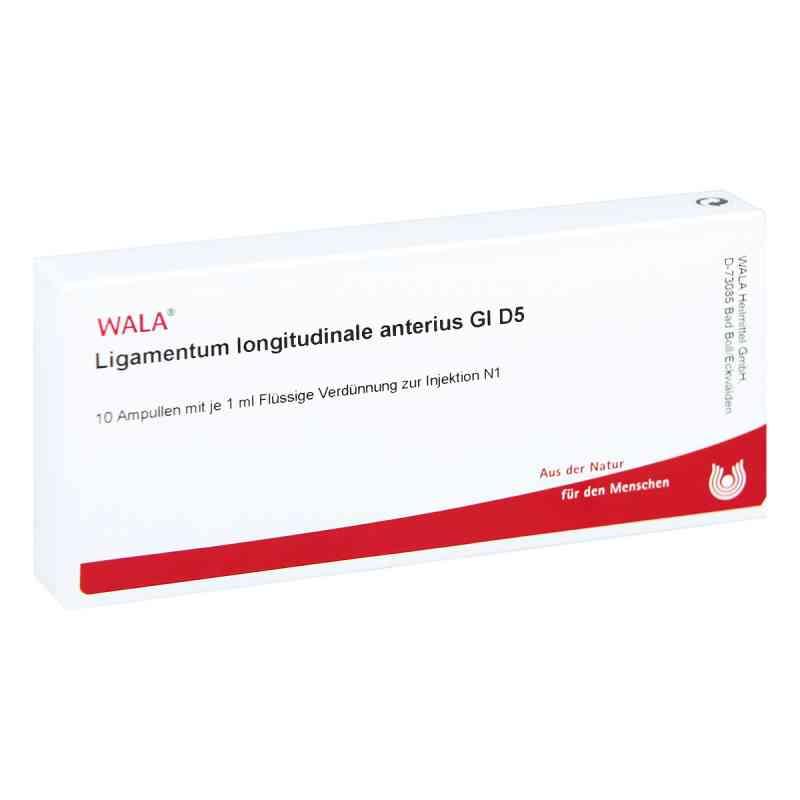 Ligamentum Longitud. Anter. Gl D 5 Ampullen  bei versandapo.de bestellen
