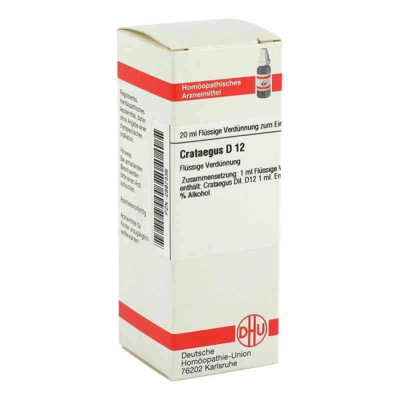 Crataegus D 12 Dilution  bei versandapo.de bestellen