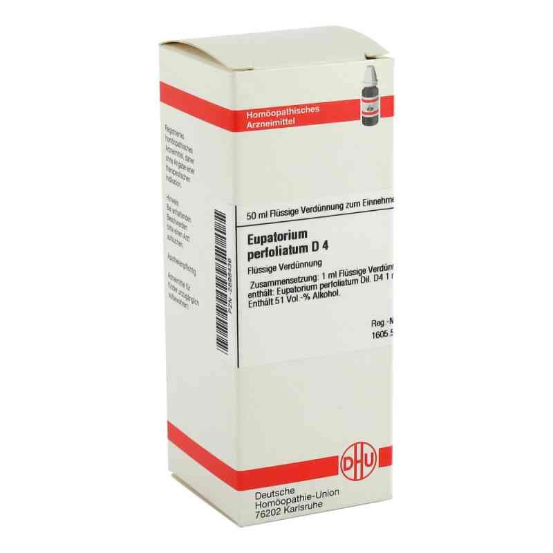 Eupatorium Perfoliatum D 4 Dilution  bei versandapo.de bestellen