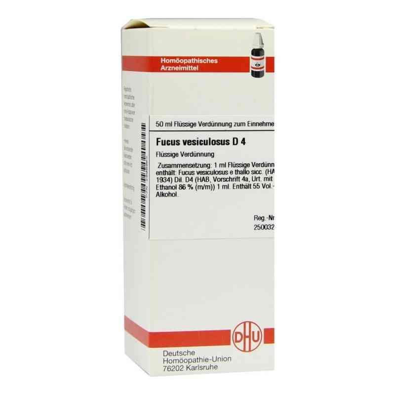 Fucus Vesiculosus D 4 Dilution  bei versandapo.de bestellen