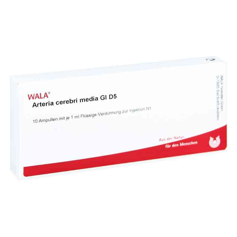 Arteria Cerebri Media Gl D 5 Ampullen  bei versandapo.de bestellen