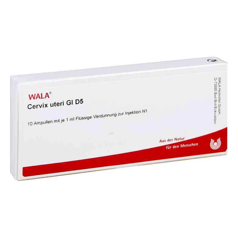 Cervix Uteri Gl D 5 Ampullen  bei versandapo.de bestellen
