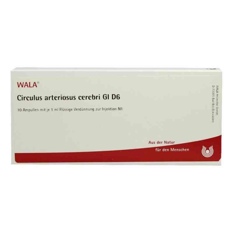 Circulus Arterios. Cer. Gl D 6 Ampullen  bei versandapo.de bestellen