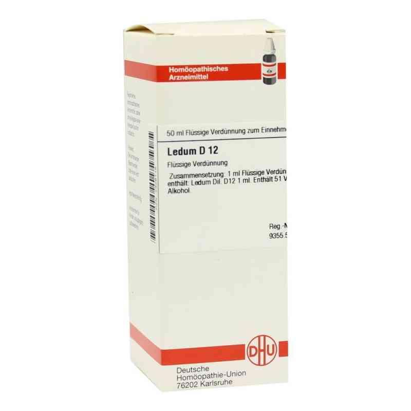 Ledum D 12 Dilution  bei versandapo.de bestellen