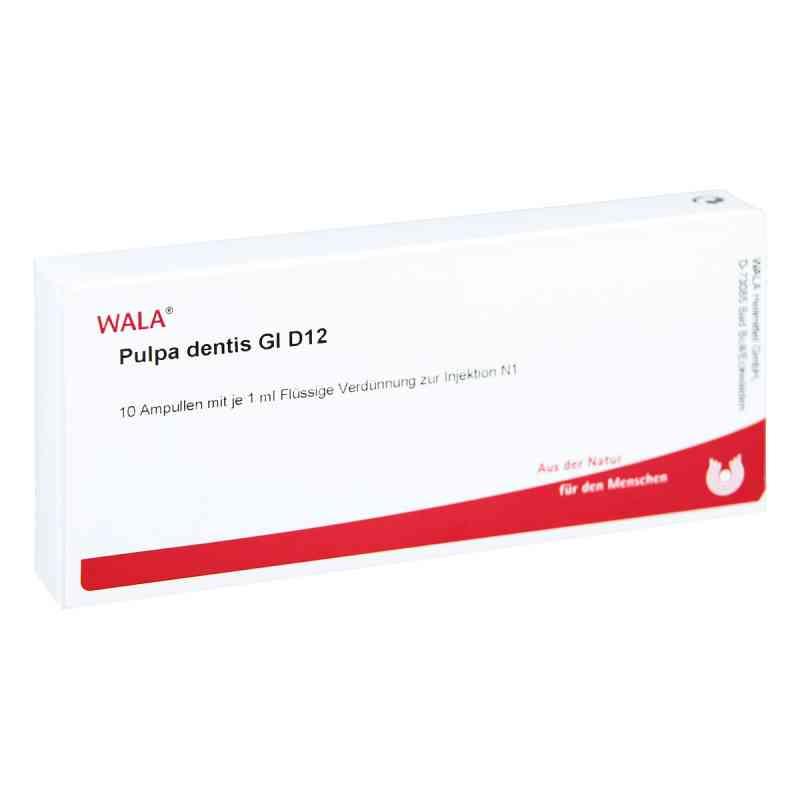 Pulpa Dentis Gl D 12 Ampullen  bei versandapo.de bestellen
