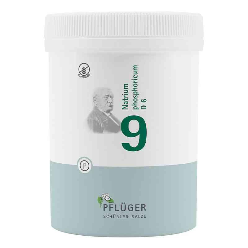 Biochemie Pflüger 9 Natrium phosphoricum D6 Tabletten  bei versandapo.de bestellen
