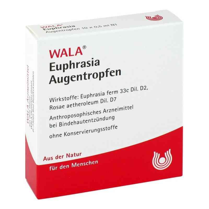 Euphrasia Augentropfen  bei versandapo.de bestellen