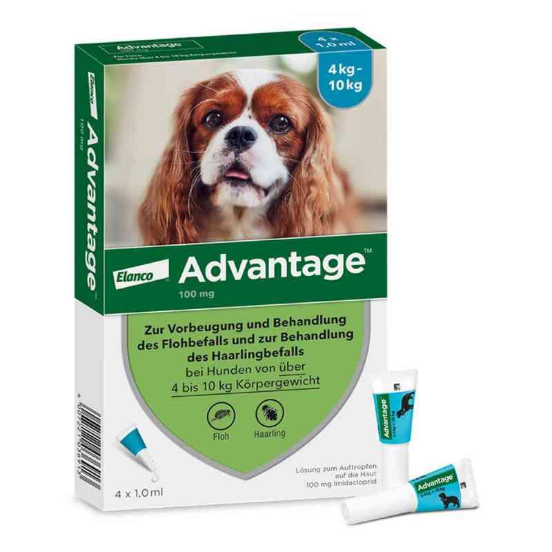 Advantage 100 für Hunde Lösung  bei versandapo.de bestellen