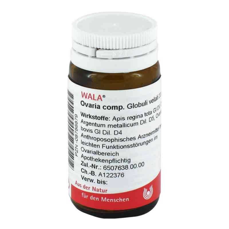 Ovaria Comp. Globuli  bei versandapo.de bestellen