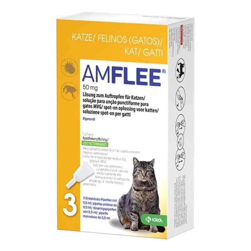 Amflee 50 mg Lösung zum Auftropfen für Katzen  bei versandapo.de bestellen