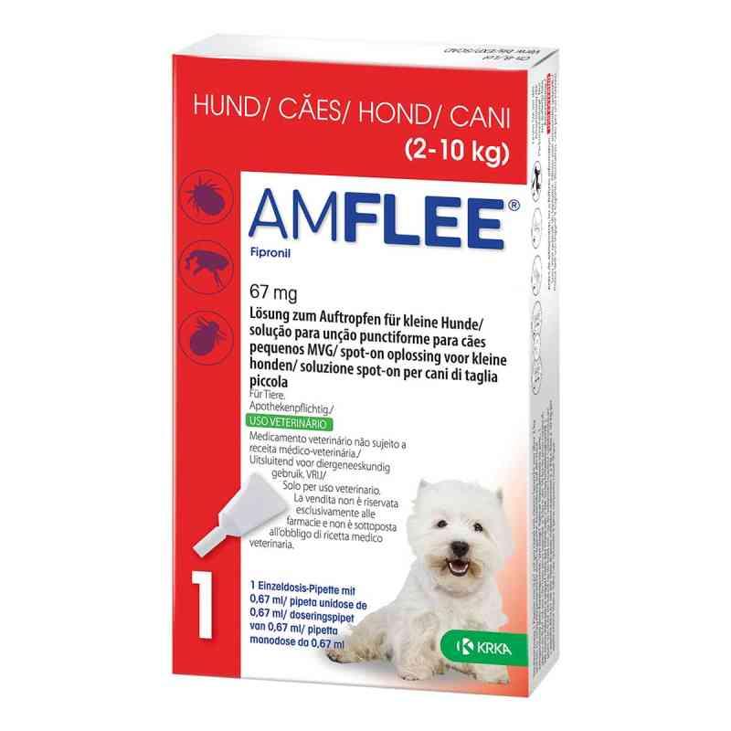 Amflee 67 mg Lösung zum Auftropfen für kleine Hunde  bei versandapo.de bestellen