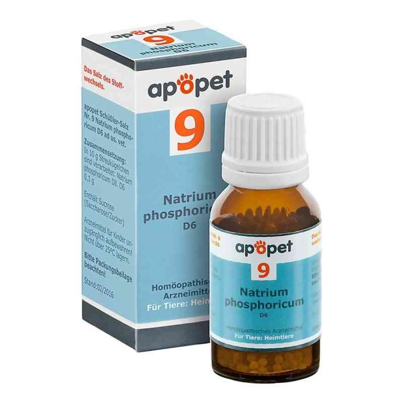 Apopet Schüssler-salz Nummer 9  Natrium phosphoricum D  6 veteri  bei versandapo.de bestellen