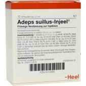 Adeps Suillus Injeel Ampullen  bei versandapo.de bestellen