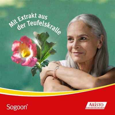 Sogoon - mit Teufelskralle  bei versandapo.de bestellen