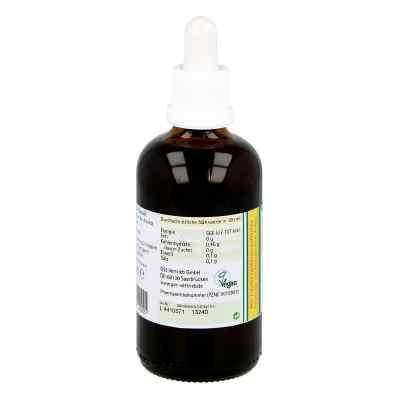 Koriander Extrakt Bio 23% V/v  bei versandapo.de bestellen