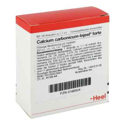 Calcium Carbonicum Injeel forte Ampullen  bei versandapo.de bestellen
