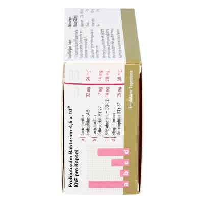 Lactobiogen Kapseln  bei versandapo.de bestellen