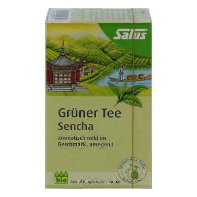 Grüner Tee bio Salus Filterbeutel  bei versandapo.de bestellen