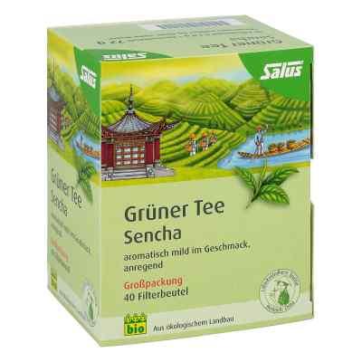 Grüner Tee bio Salus Filterbeutel Grosspackung  bei versandapo.de bestellen