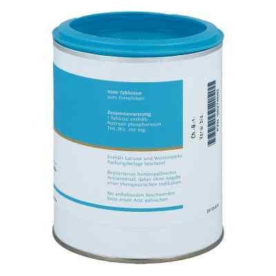 Biochemie Dhu 9 Natrium phosph. D12 Tabletten  bei versandapo.de bestellen
